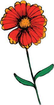 hand drawn, cartoon, sketch illustration of field flower