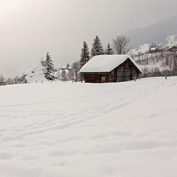 Old barn on snowy field in the Swiss Alps. Grindelwald, Switzerland.