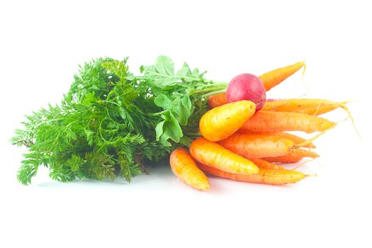 bunch of carrots and radish with green leaves isolated on white