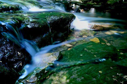 Slow mossy creek