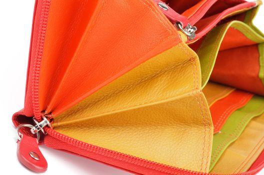 Multi Colored Purse
