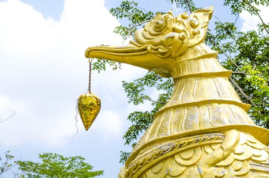 Thai swan see in temple of Thailand