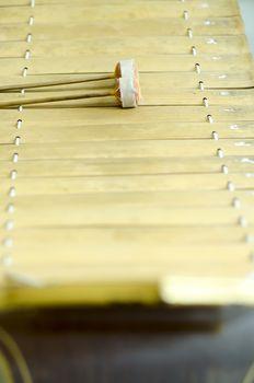 thai alto xylophone asia music instrument