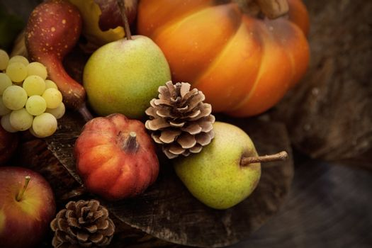 Autumn nature. Fall fruit on wood. Pumpkins, apples,grapes, courgettes and pears