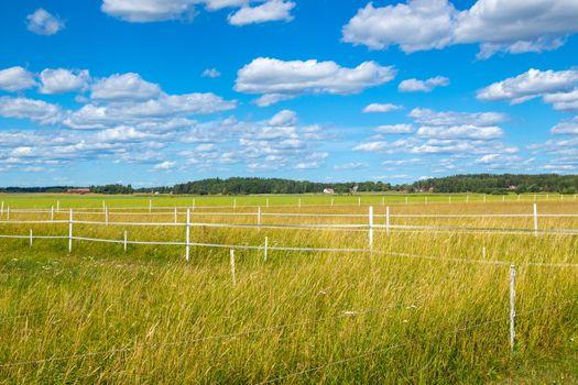Scandinavian countryside in summer