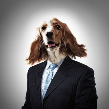Funny portrait of a dog in a suit on an abstract background. Collage.
