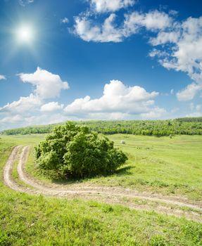 winding road to horizon