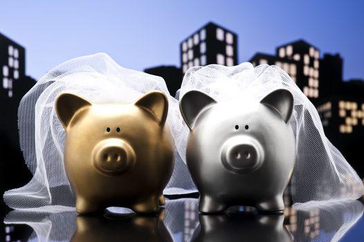 Metropolis City lesbian piggy bank civil union with veil