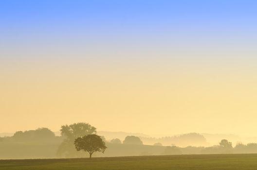 rural scene at dawn