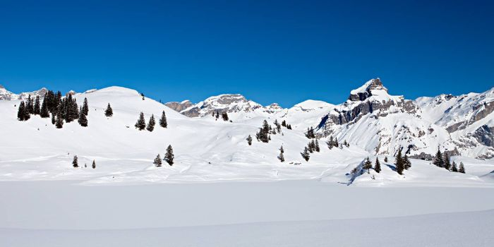 Panoramic photo of snow covered mountains on a bight day with deep blue sky in the Swiss Alps.