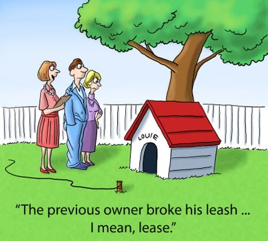Real Estate Opportunity