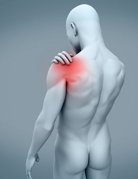 Digital human with shoulder pain