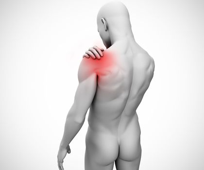 Highlighted shoulder joint of human figure