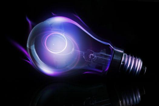 Purple light bulb with filament