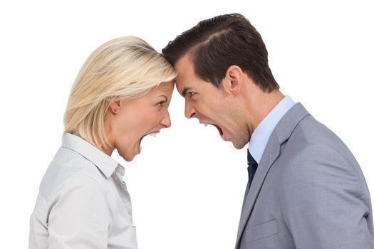 Colleagues quarreling head against head