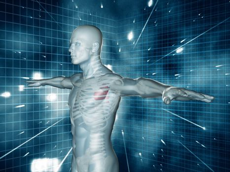 Medical human representation standing