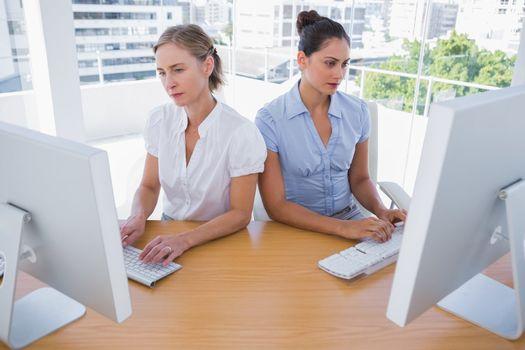 Businesswomen working side by side