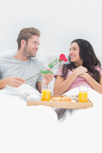 Handsome man giving a rose to his wife during breakfast in their bed
