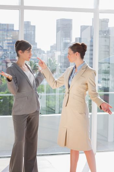 Businesswomen having a fight