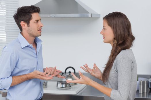 Couple quarreling in the kitchen