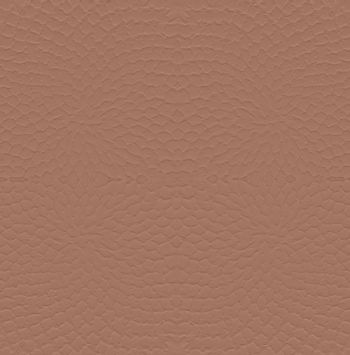 Blank Wall  brown pattern Background