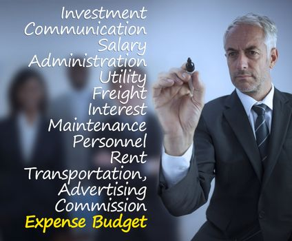 Sophisticated businessman writing expense terms