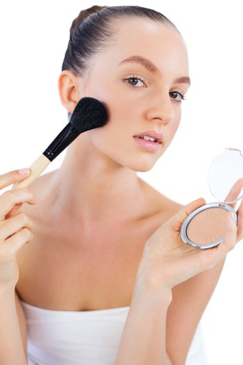 Young model with powder compact and brush