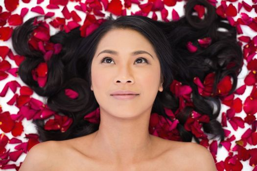 Pensive sensual dark haired model lying in rose petals on white background