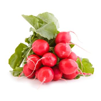 Red radish vegetable
