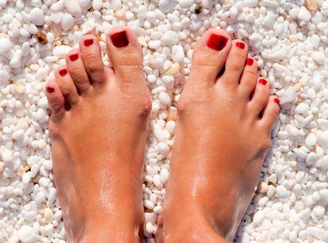Female feets
