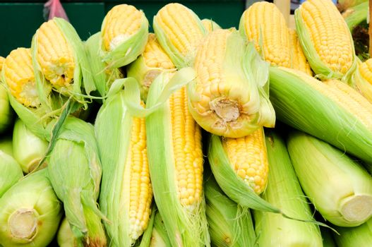 Corn in the market
