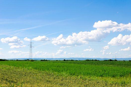 Landscape of the Vojvodina regiona
