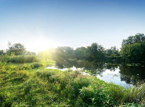 River in sunny morning
