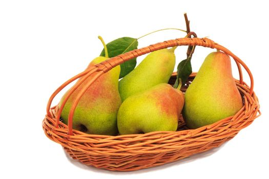 On a white background wicker basket, there are large ripe, juicy pears.