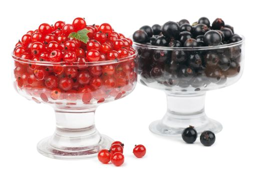 Red and black currants with green leaf over white background