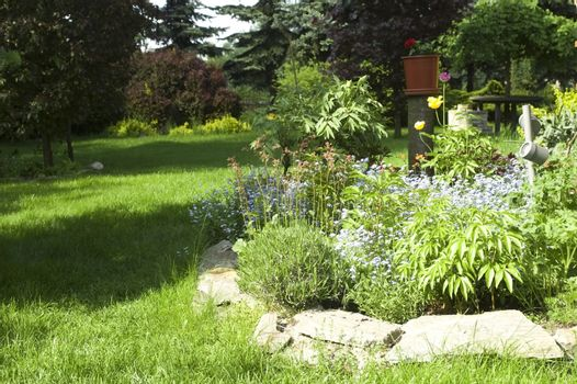 peaceful garden. spring