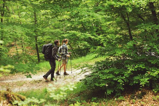 Two nordic walkers