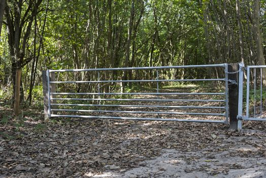 closed fence to the forest