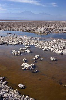 Atacama Salt Flats - Atacama Desert - Chile