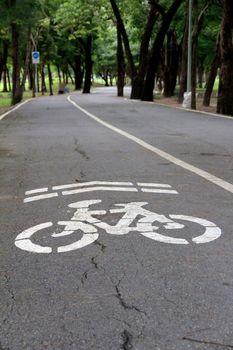 Bike lane in the park