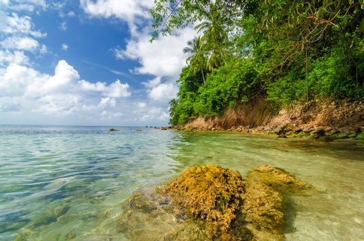 View of lush green tropical coast in the Caribbean Sea on San Andres y Providencia, Colombia