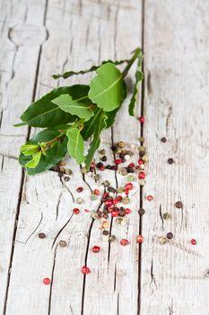twig of fresh laurel and peppercorns