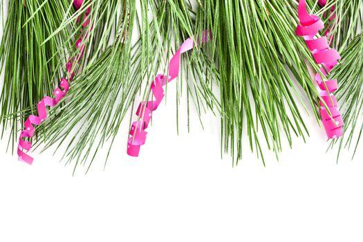 fir tree branch with serpentine