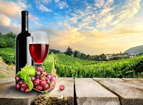 Wine with grape and vineyard