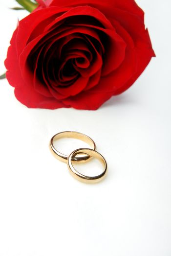 Romantic gift of red rose and engagement rings