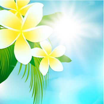 Summer Sun With Palm Leaves and Frangipani Flowers Over Blue Sky