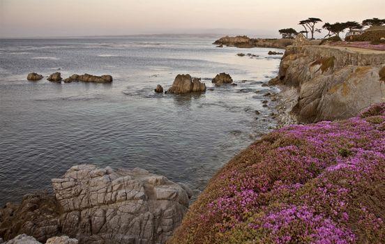 Monterey Coast California