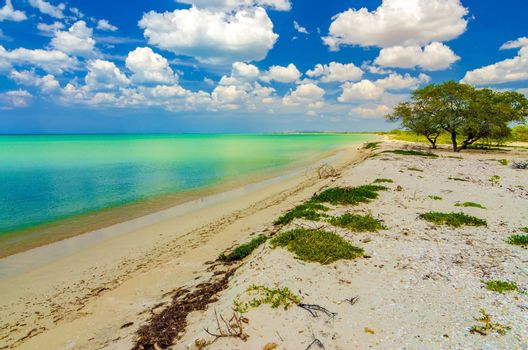 Caribbean Sea beach with green and turquoise water in La Guajira, Colombia