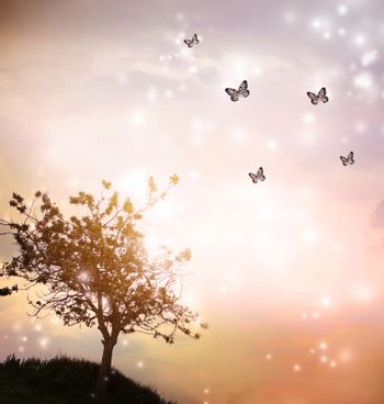 Tree silhouette with butterflies in twilight