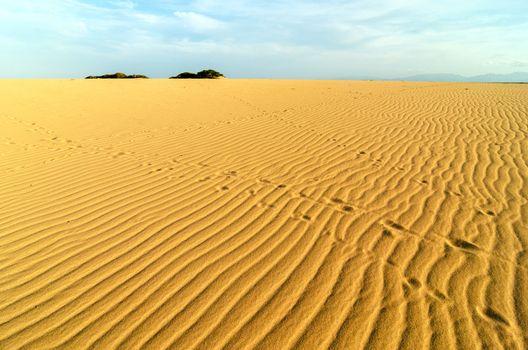 Patterns on a sand dune in La Guajira, Colombia